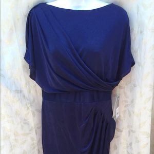 ( Donna Ricco) size 12P dress NWT